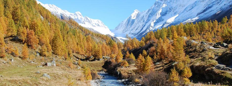 Chalet Wachsmuth herrliche Natur im Herbst